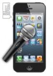 iPhone 5S Mic Problem